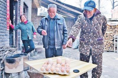 """郏县农户家中母鸡产下""""超级""""鸡蛋 重达208克"""