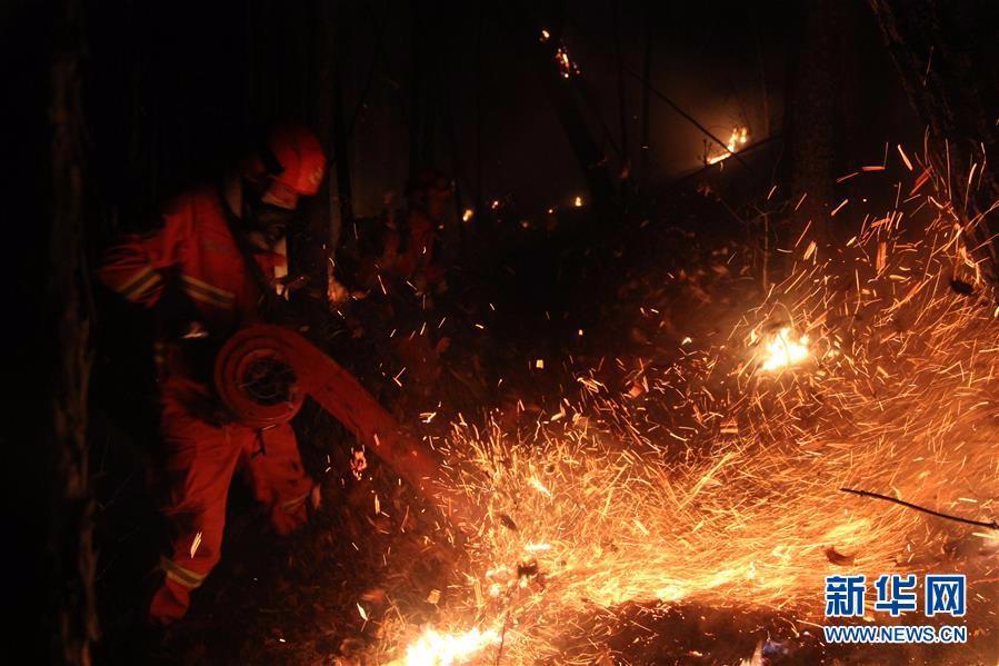 内蒙古陈巴尔虎旗那吉林场发生森林草原火灾
