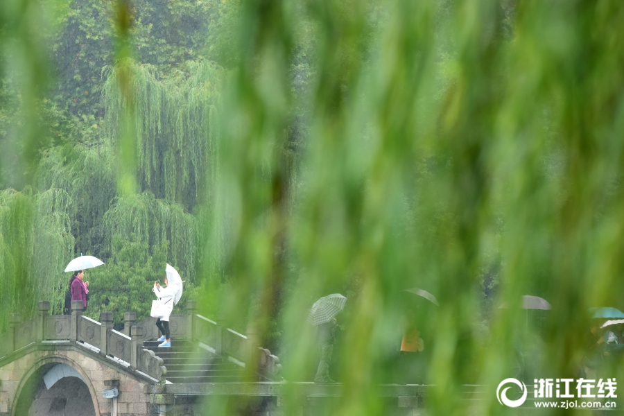 杭州:秋雨绵绵  凉意阵阵